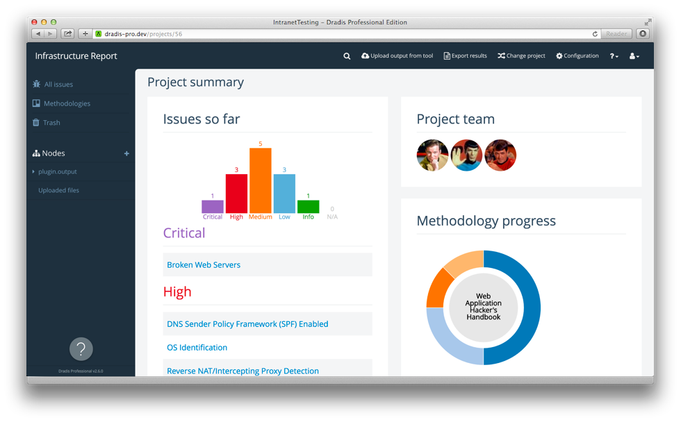 The Project Summary View With Findings Chart Methodology Progress And Team Components